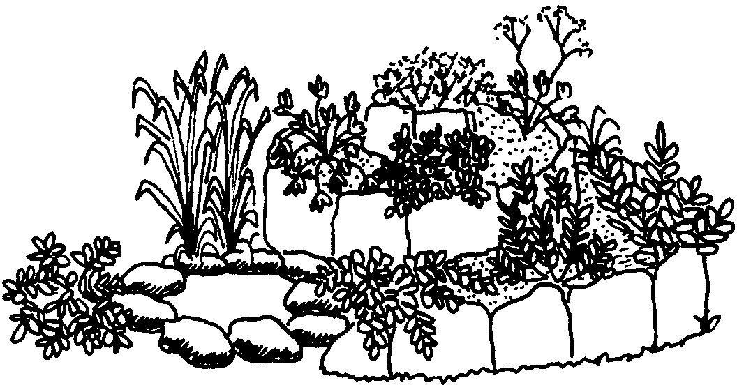 12. Ο κήπος μας: Ζώνη I